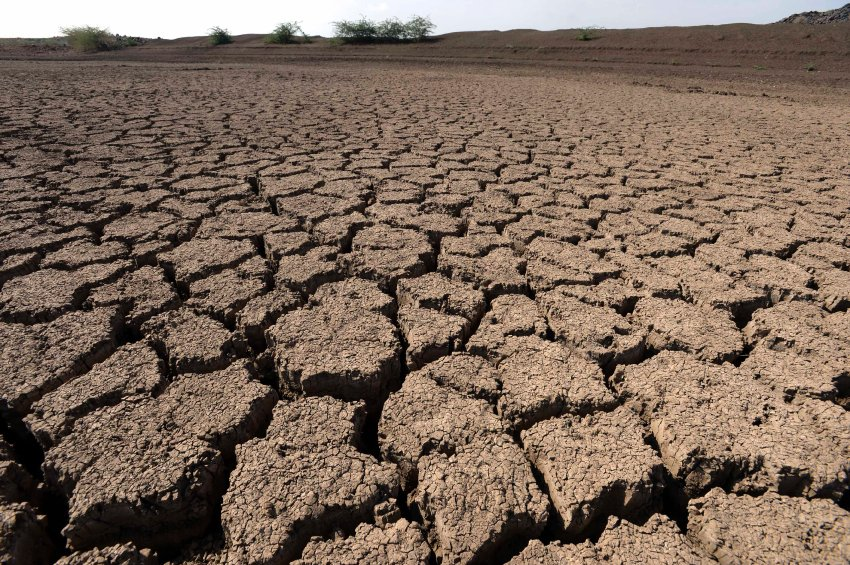 The soil in the Afar region is totally dry and hard as cement. The state of emergency here has become the normal state of affairs.